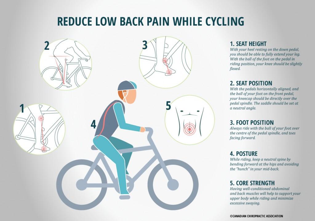 Bike-Infographic1-1024x721